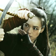 the-assassin-qi-shu